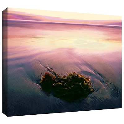 ArtWall 'Twilight Kelp' Gallery-Wrapped Canvas 18