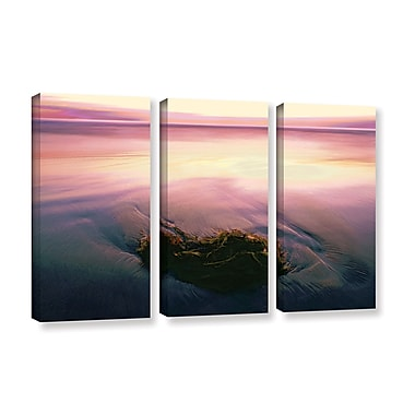ArtWall 'Twilight Kelp' 3-Piece Gallery-Wrapped Canvas Set 36