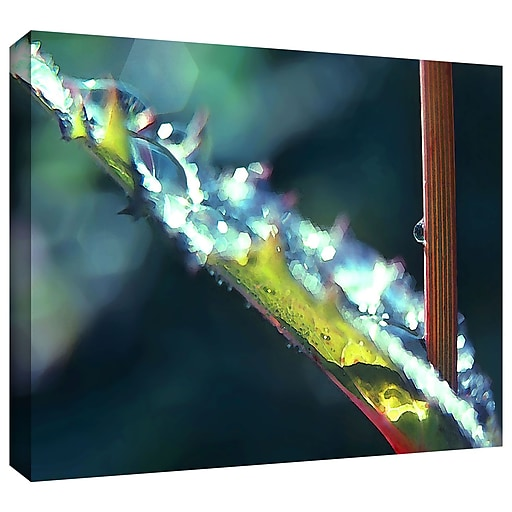 """ArtWall """"After Garden Rain"""" Gallery-Wrapped Canvas 24"""" x 32"""" (0uhl145a2432w)"""