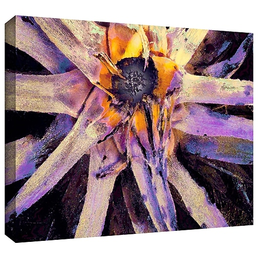 """ArtWall 'Agave Glow' Gallery-Wrapped Canvas 24"""" x 32"""" (0uhl146a2432w)"""
