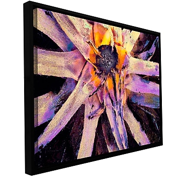 ArtWall 'Agave Glow' Gallery-Wrapped Canvas 14