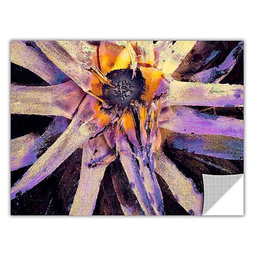 """ArtWall """"Agave Glow"""" Art Appeelz Removable Wall Art Graphic 24"""" x 32"""" (0uhl146a2432p)"""
