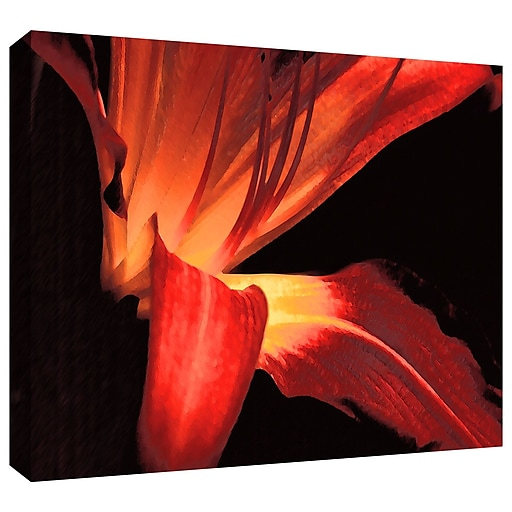 "ArtWall 'Blossom Glow' Gallery-Wrapped Canvas 36"" x 48"" (0uhl149a3648w)"