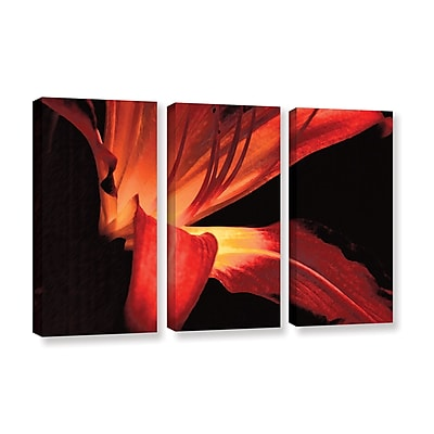 ArtWall 'Blossom Glow' 3-Piece Gallery-Wrapped Canvas Set 36