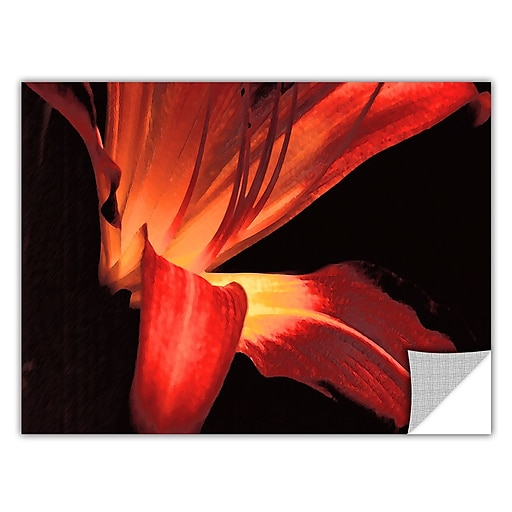 "ArtWall 'Blossom Glow' Art Appeelz Removable Wall Art Graphic 36"" x 48"" (0uhl149a3648p)"