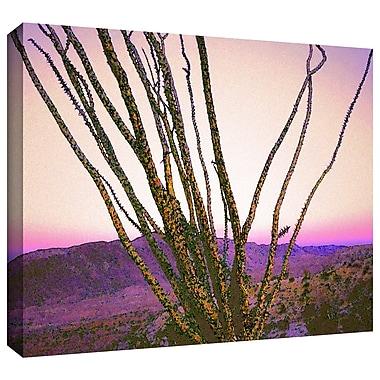 ArtWall 'Borrego Desert Dawn' Gallery-Wrapped Canvas 24
