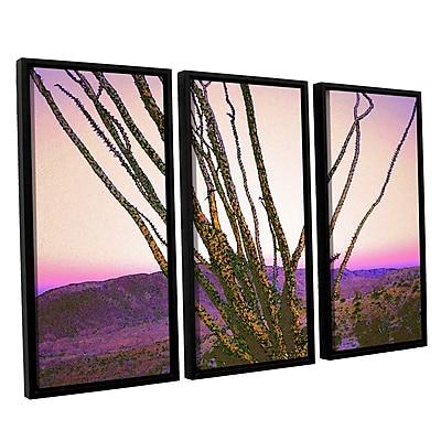 ArtWall 'Borrego Desert Dawn' 3-Piece Canvas Set 36