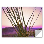 "ArtWall 'Borrego Desert Dawn' Art Appeelz Removable Wall Art Graphic 36"" x 48"" (0uhl150a3648p)"