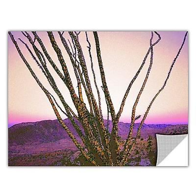 ArtWall 'Borrego Desert Dawn' Art Appeelz Removable Wall Art Graphic 24