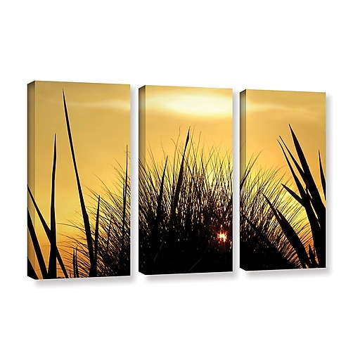"""ArtWall 'Deep In July' 3-Piece Gallery-Wrapped Canvas Set 36"""" x 54"""" (0uhl156c3654w)"""