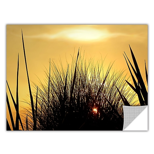 """ArtWall 'Deep In July' Art Appeelz Removable Wall Art Graphic 14"""" x 18"""" (0uhl156a1418p)"""