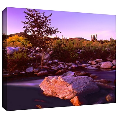 ArtWall 'Deer Creek Evening' Gallery-Wrapped Canvas 36