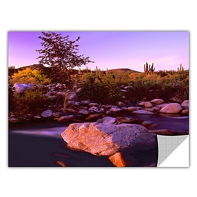 ArtWall 'Deer Creek Evening' Art Appeelz Removable Wall Art Graphic 24