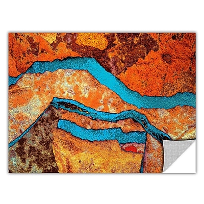 ArtWall 'Niquesa' Art Appeelz Removable Wall Art Graphic 24