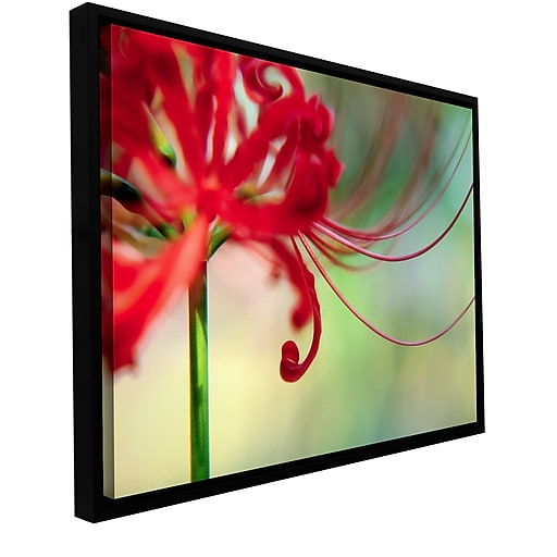 "ArtWall 'Soft Spring' Gallery-Wrapped Canvas 18"" x 24"" Floater-Framed (0uhl169a1824f)"