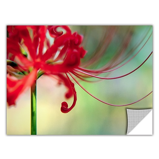 "ArtWall 'Soft Spring' Art Appeelz Removable Wall Art Graphic 14"" x 18"" (0uhl169a1418p)"
