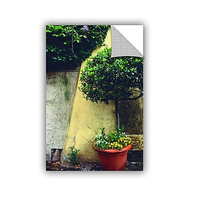 "ArtWall 'Giardino Di Boboli Wall' Art Appeelz Removable Wall Art Graphic 32"" x 48"" (0yat072a3248p)"