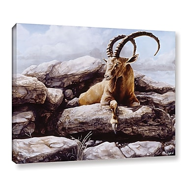 ArtWall 'Ibex' Gallery-Wrapped Canvas 18