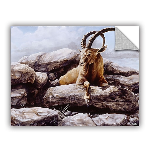 "ArtWall ""Ibex"" Art Appeelz Removable Wall Art Graphic 36"" x 48"" (0goa002a3648p)"