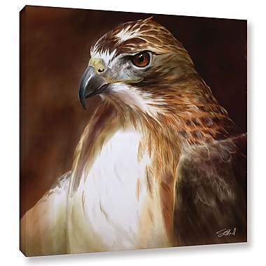 ArtWall 'RedTailed Hawk' Gallery-Wrapped Canvas 24