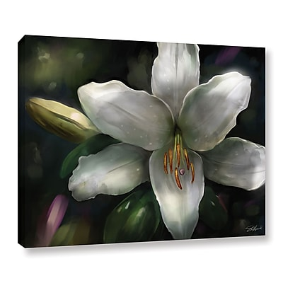 ArtWall 'Star Gazer' Gallery-Wrapped Canvas 24