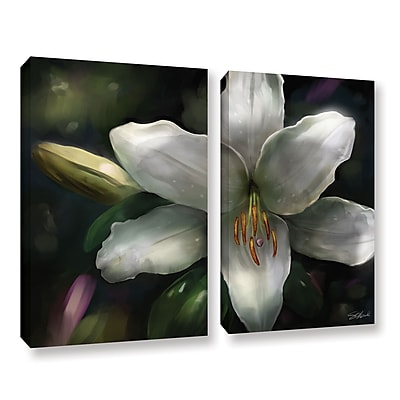 ArtWall 'Star Gazer' 2-Piece Gallery-Wrapped Canvas Set 24