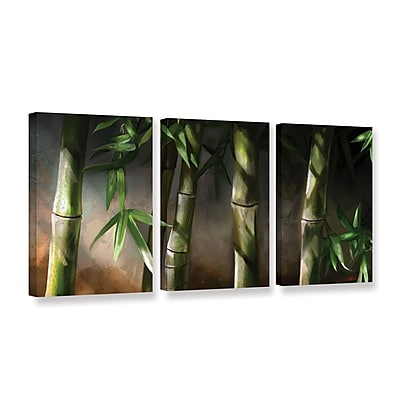ArtWall 'Bamboo' 3-Piece Gallery-Wrapped Canvas Set 24