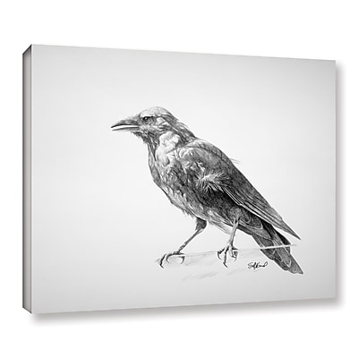 ArtWall 'Crow Drawing' Gallery-Wrapped Canvas 18