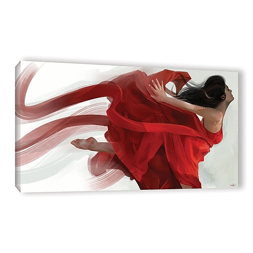 "ArtWall 'Dance' Gallery-Wrapped Canvas 12"" x 24"" (0goa051a1224w)"