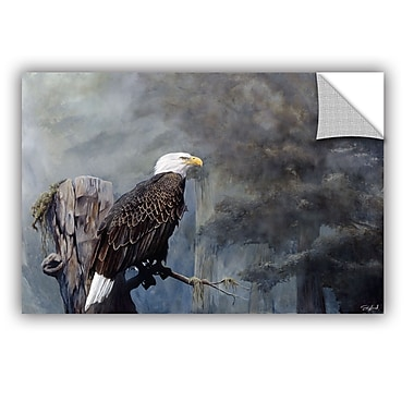 ArtWall 'Freedom Haze' Art Appeelz Removable Wall Art Graphic 24