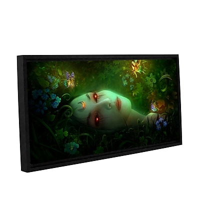 """ArtWall 'Aadyasha' Gallery-Wrapped Canvas 24"""" x 48"""" Floater-Framed (0str001a2448f)"""