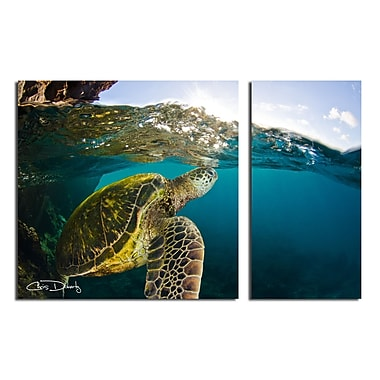 Ready2hangart 'Maui Turtle Drifts' by Chris Doherty 2 Piece Photographic Print on Wrapped Canvas Set