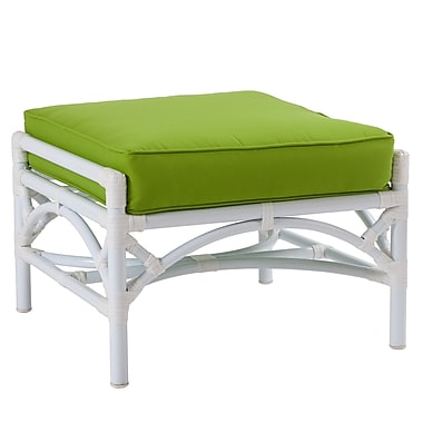 David Francis Furniture Chippendale Ottoman w/ Cushion; Macaw