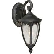 Forte Lighting 1-Light Outdoor Wall Lantern; 17.75'' H x 8'' W x 10.5'' D / Black