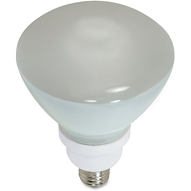 Satco 23-Watt CFL R40 Compact Floodlight