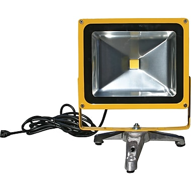 Lind Equipment 50W Beacon Light LED Floodlights