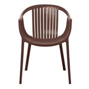 Gold Sparrow Rowan Arm Chair (Set of 2); Brown