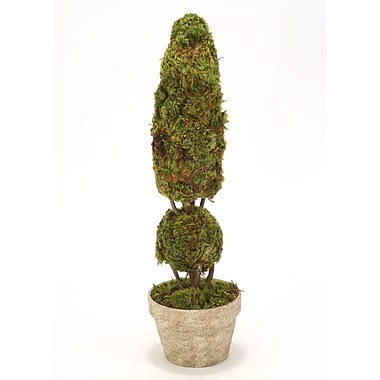 Distinctive Designs Cone and Ball Moss Topiary in Pot