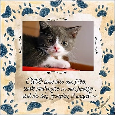 LPGGreetings Life Lines Cat Photo by Lori Voskuil-Dutter Graphic Art Plaque