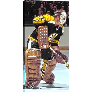 Cheevers G Unsigned HHOF Canvas, Bruins Close-Up -V, 14