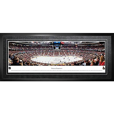 Ottawa Senators Framed, Panorama Arena, 21