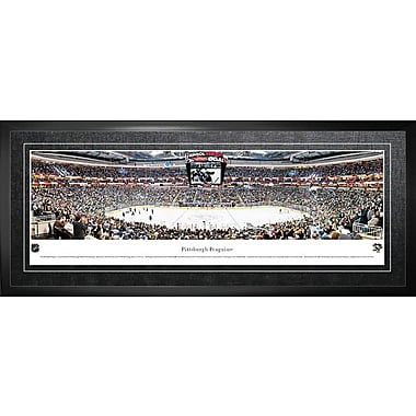 Pittsburgh Penguins Framed, Panorama Arena, 21