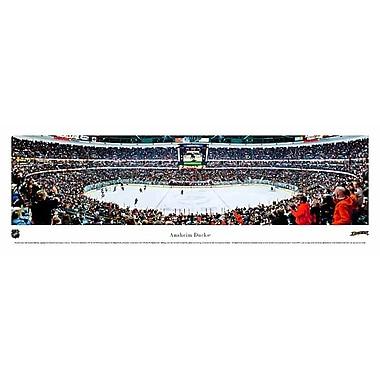 Anaheim Ducks Arena Panorama Plaque, 21