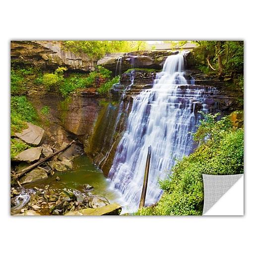 "ArtWall 'Brandywine Falls 2' Art Appeelz Removable Wall Art Graphic 16"" x 24"" (0yor008a1624p)"