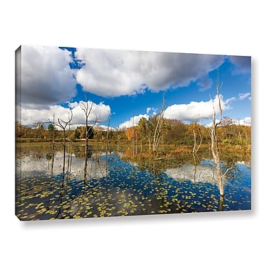 ArtWall 'Beaver Marsh' Gallery-Wrapped Canvas 16