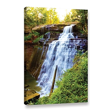 ArtWall 'Brandywine Falls' Gallery-Wrapped Canvas 24