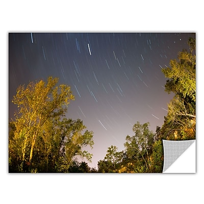 ArtWall 'Star Trails' Art Appeelz Removable Wall Art Graphic 12