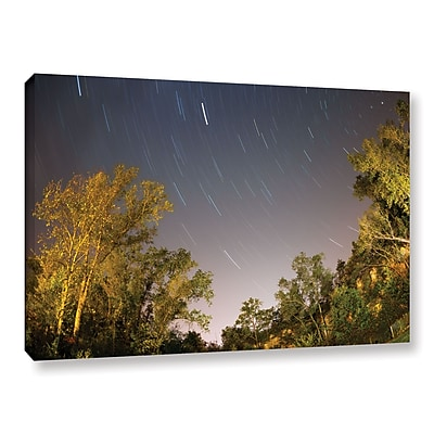 ArtWall 'Star Trails' Gallery-Wrapped Canvas 16