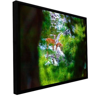 ArtWall 'Deer' Gallery-Wrapped Canvas 12