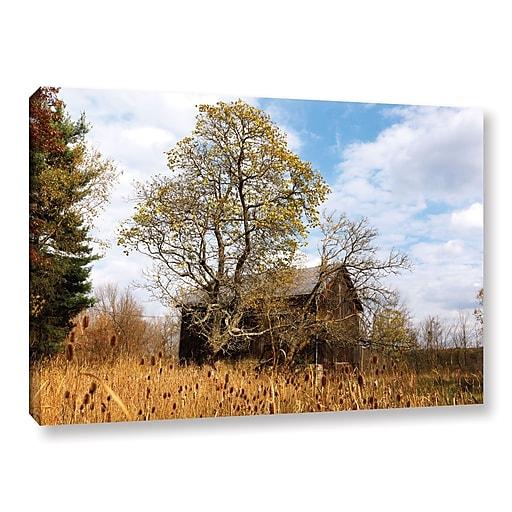 """ArtWall 'Cvnp Barn' Gallery-Wrapped Canvas 16"""" x 24"""" (0yor038a1624w)"""